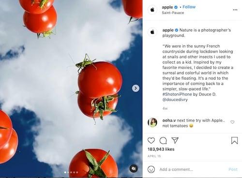 Apple Instagram Example